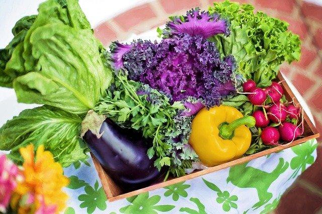 Healthy Food for Kids - Vegetable